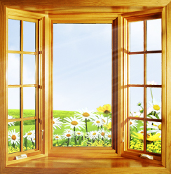 Как правильно выбрать деревянные окна?