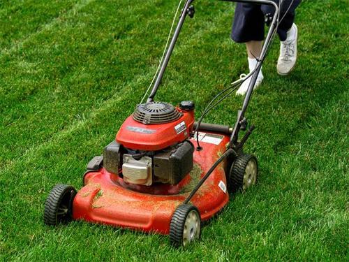Какие бывают газонокосилки