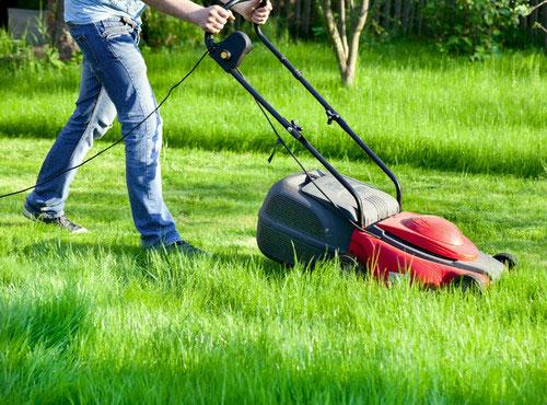 Триммер для травы с электродвигателем