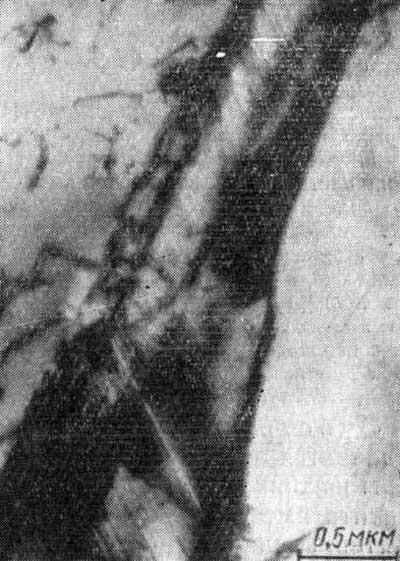 Параллельные двойниковые прослойки в мидрибе