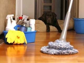 Уборка квартиры: доверяем профессионалам