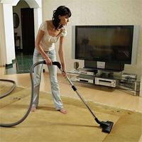Уборка квартир: борьба с вредными насекомыми