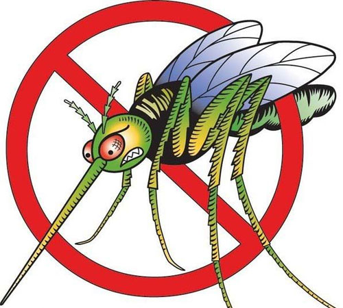 Эффективная борьба с надоевшими комарами