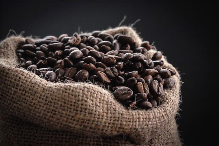 Учимся выбирать кофе: арабика или робуста?