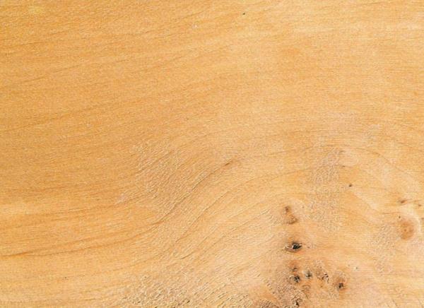 Древесина Алдер: свойства и способы обработки
