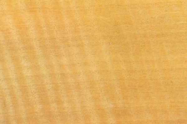Древесина Анингерия: свойства и способы обработки
