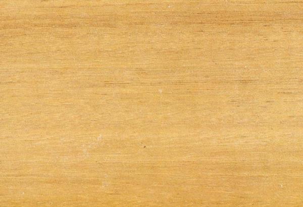 Ясень Австралийский: свойства и способы обработки