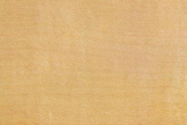 Береза Папирусная