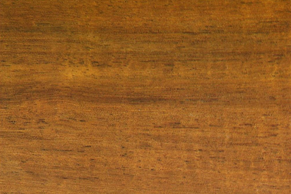 Черное Дерево Австралийское