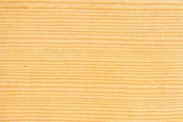 Дугласова пихта: свойства и способы обработки