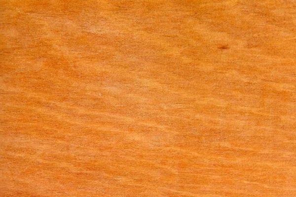 Каучуковое дерево: свойства и способы обработки