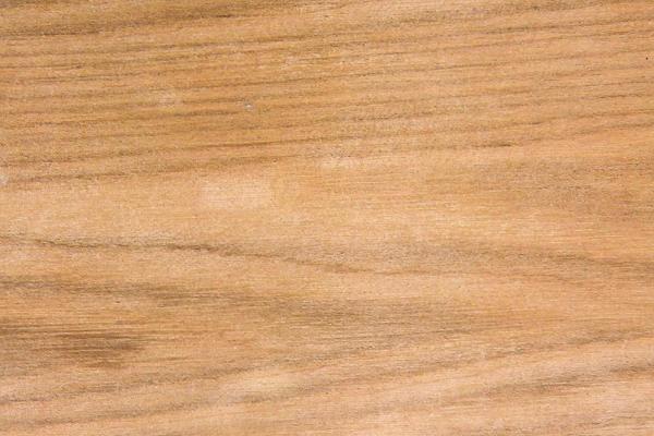 Орех Серый: свойства и способы обработки