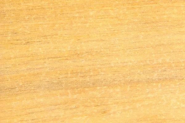 Каатоан Бангкал: свойства и способы обработки