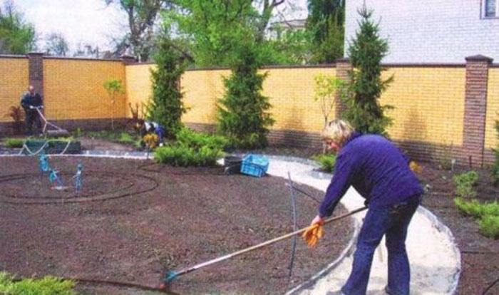 Газон своими руками. Правила и принципы озеленение в Воронеже и не только