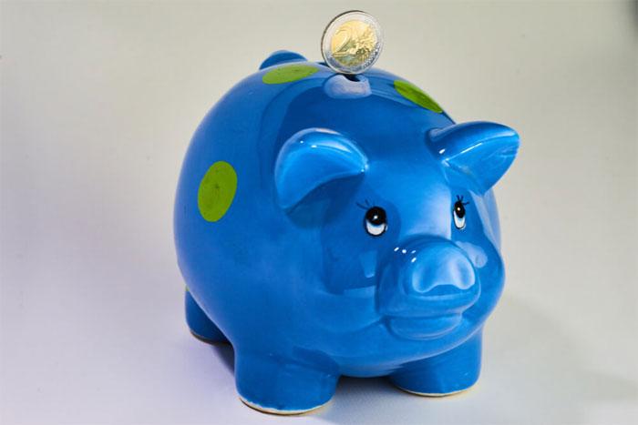 Виды кредитования и их особенности