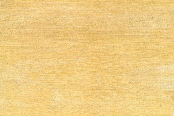Лауан Белый: свойства и способы обработки