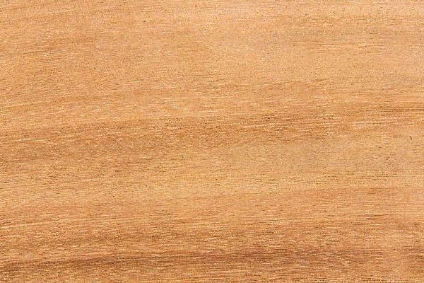 Мухимби: свойства и способы обработки