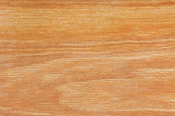 Красный Тулипский Дуб: свойства и способы обработки