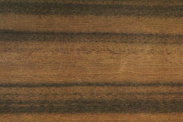 Орех Квинсландский: свойства и способы обработки