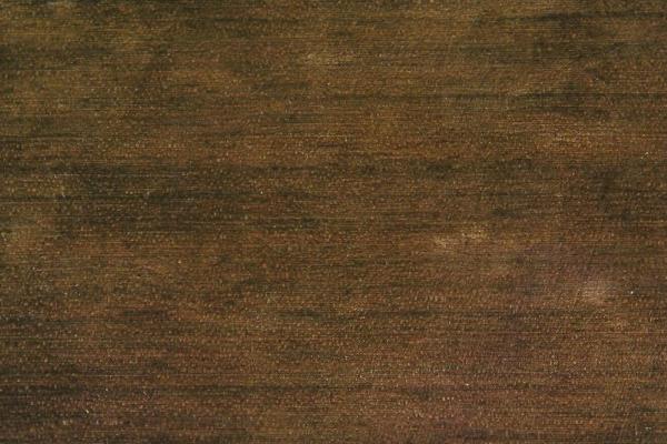 Орех Южноамериканский: свойства и способы обработки