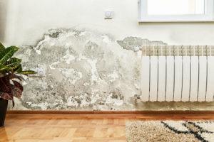 Сушка стен дома. Обзор способов и затрат