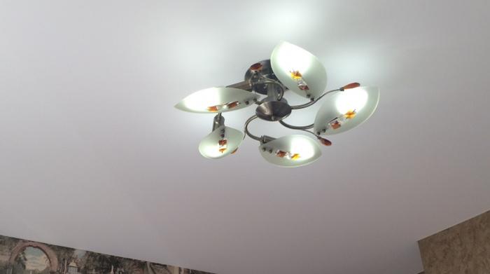 Как выбрать правильный потолок?